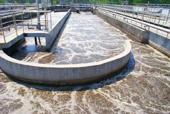污水除磷的重要性